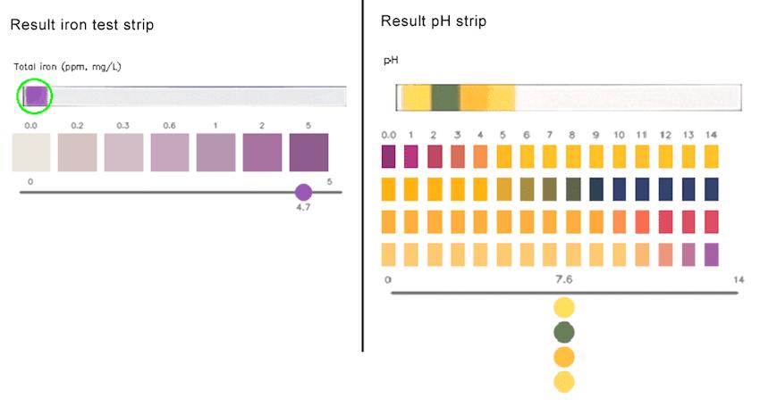 caddisfly-test-strips-pic3-850px